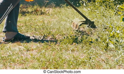 Gardener Mows Grass using a Portable Lawnmower