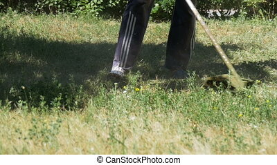 Gardener Mows Grass using a Portable Lawnmower - Gardener...