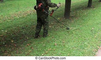 gardener mows the lawn mower green grass, gardening