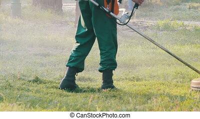 Gardener Mows the Lawn Mower Green Grass - Man Gardener mows...