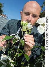 gardener pruning flowers