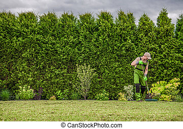 Gardener Raking Freshly Mowed Grass From Backyard Garden Lawn