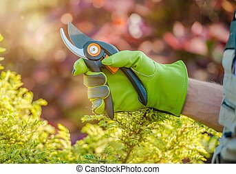 Ready For Garden Works