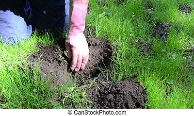 gardener set  mole trap