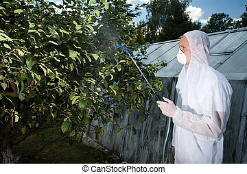 Gardener spraying trees