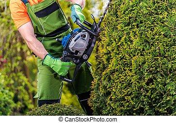 Gardener Topiary Job