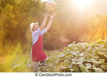 Gardener with pumpkin