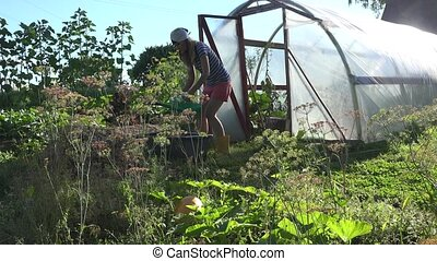 Gardener woman draw water with watering can from basin and...