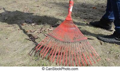 gardener woman rake grass