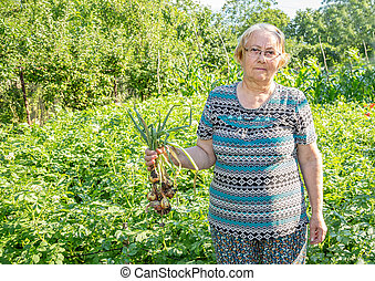 Gardener woman  standing with a bunch of green onions