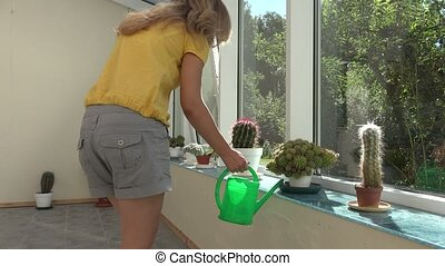 Gardener woman watering cactus plant with green watering can in conservatory. 4K