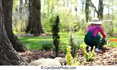 Gardener woman working