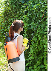 gardener working with garden spray
