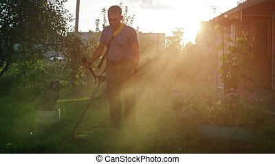 Early morning sunshine filters through the dust as a gardener's string trimmer kicks up shredded grass debris, UltraHD 4k video with sound.