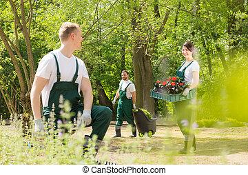 Gardeners planting flowers in park