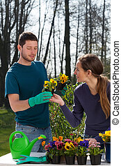 Gardeners planting flowers