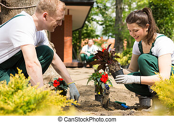 Gardeners planting red flowers