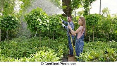 Gardeners watering plants - Gardeners man and woman standing...