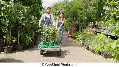 Gardeners with wagon - Male and female coworking...