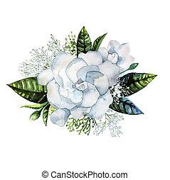 gardenia, acuarela, viñeta, gypsophila