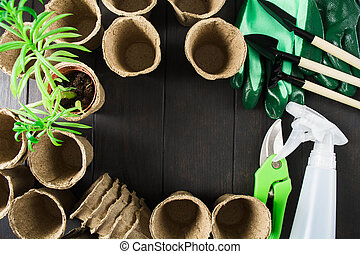 Gardening accessories with tools, pruner, organic pots and plant on wooden table