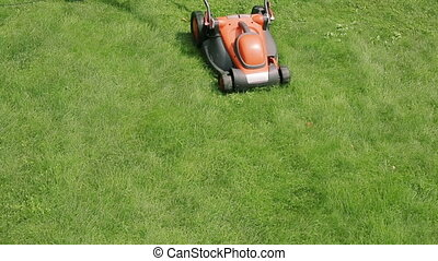 Lawn mower cutting the grass