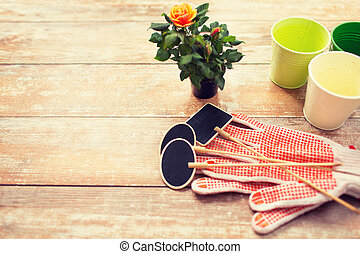 close up of rose flower and garden tools on table