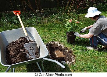 Gardening at leisure