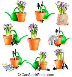 Gardening background