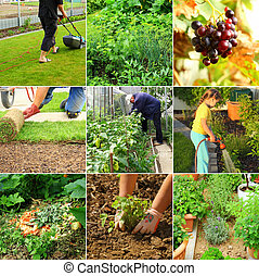 Collection of garden images - composting, cutting grass, watering,
