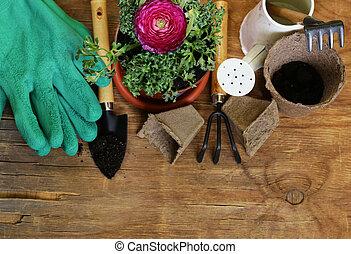 Gardening concept