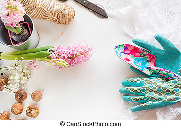 Gardening concept. Still life of seedling hyacinth, garden tools, scissors, twine, tubers-bulbs gladiolus with copy space. Spring background.