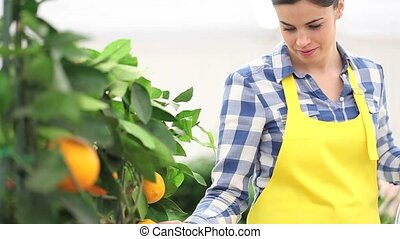 gardening concept, woman florist