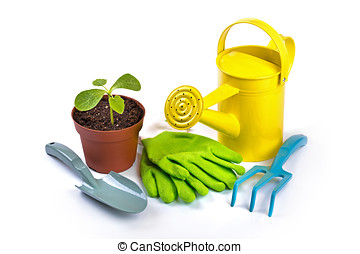 gardening equipment and potted plant isolated on white background
