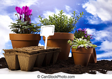 Flowers and garden tools on blue sky background