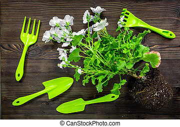 gardening equipment with rake and trowel for growing plants on wooden desk background top view