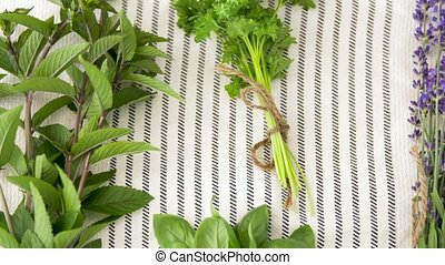greens, spices or medicinal herbs on table - gardening,...