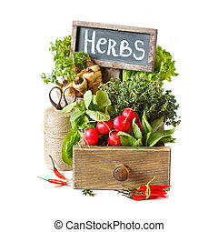 Gardening. Fresh kitchen garden herbs and vegetables.