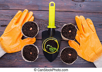 Gardening gloves and trowel with pots.