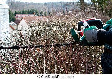 Gardening hedge cutting