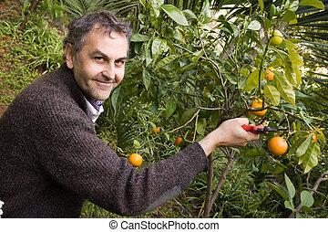 gardening in a private garden