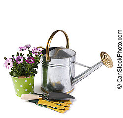 Gardening - Watering can and flower isolated on white