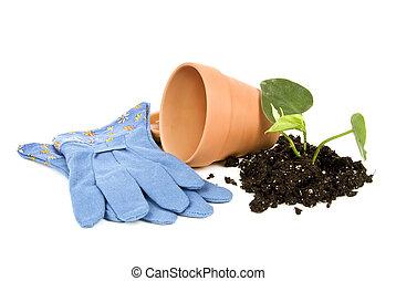 Gardening Still Life 2