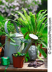 Gardening still life with an old watering can, decorative...