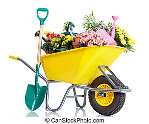 Gardening. Wheelbarrow with flowers. Isolated over white...