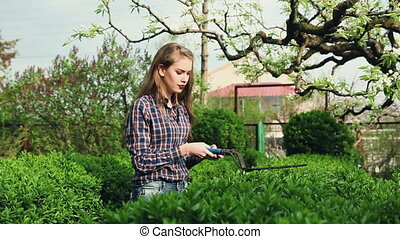 Gardening. The company of young people working in the garden. Series