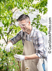 Delighted dark-haired male in protective glasses and gloves trimming tree outside