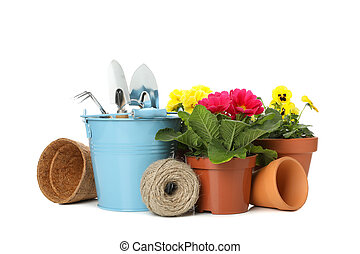 Gardening tools and flowers isolated on white background