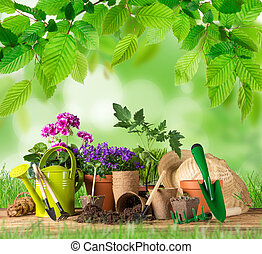 Gardening tools and flowers on wooden table.