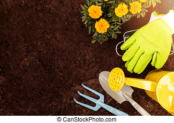 gardening tools and marigold flowers on soil background with copy space